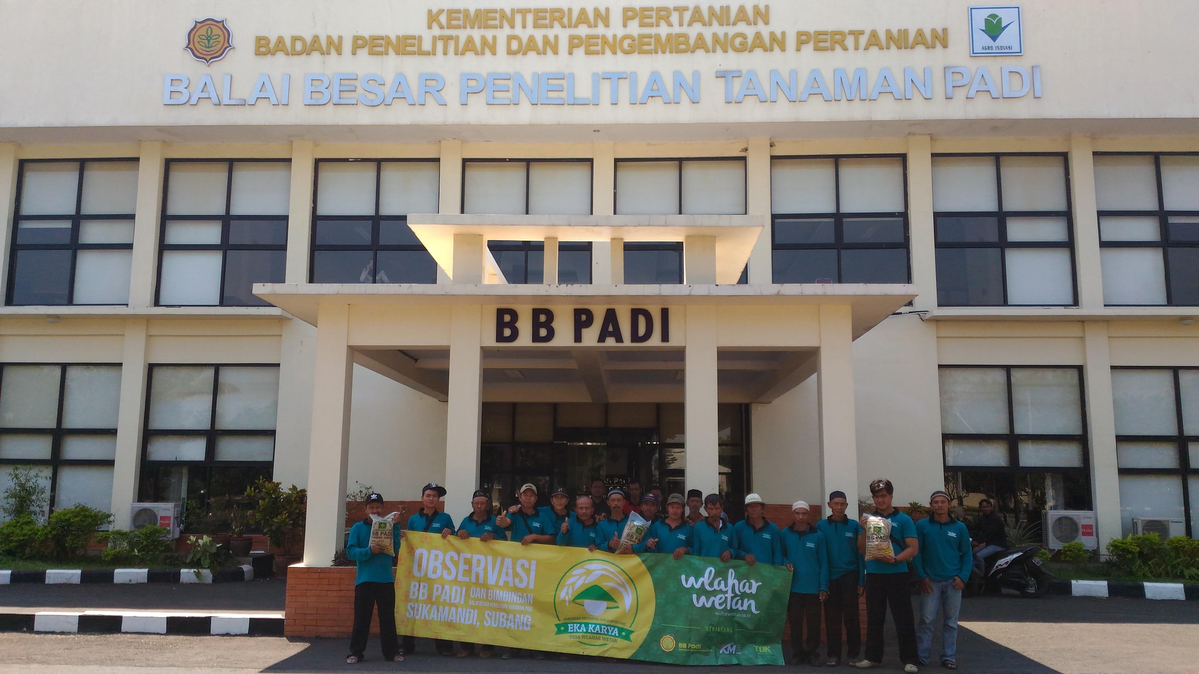 BUMDes Karya Kusuma Mandiri Siap Kembangkan Benih Padi Unggul