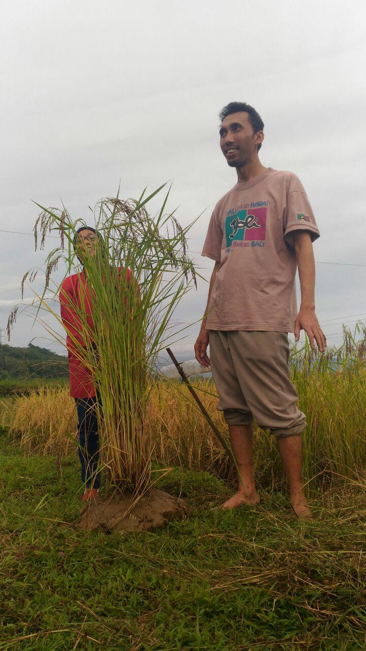 Kepompong Desa Itu Bernama Wlahar Wetan (#Catatan: Dewi Hutabarat)